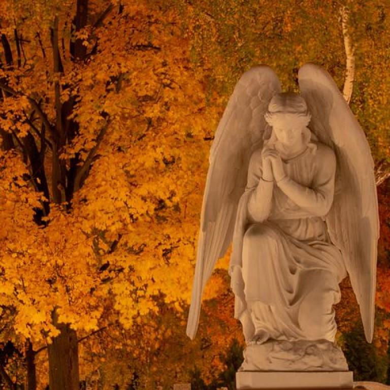 angel-4538188__480