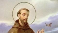 Franciscus6